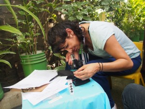 Dr. Priya Soni takes a turn looking at a specimen.